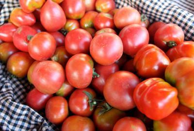 X Feria del tomate del Vallés Oriental