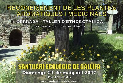 Matinal Etnobotànica al Santuari de l'Ecologia