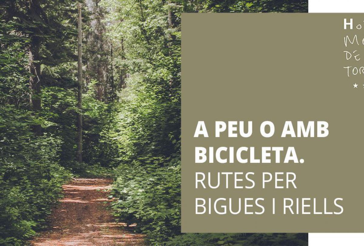 Descubre las mejores rutas en Bigues i Riells para hacer a pie o en bicicleta